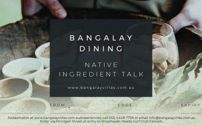 Bangalay Dining Native Ingredient Talk