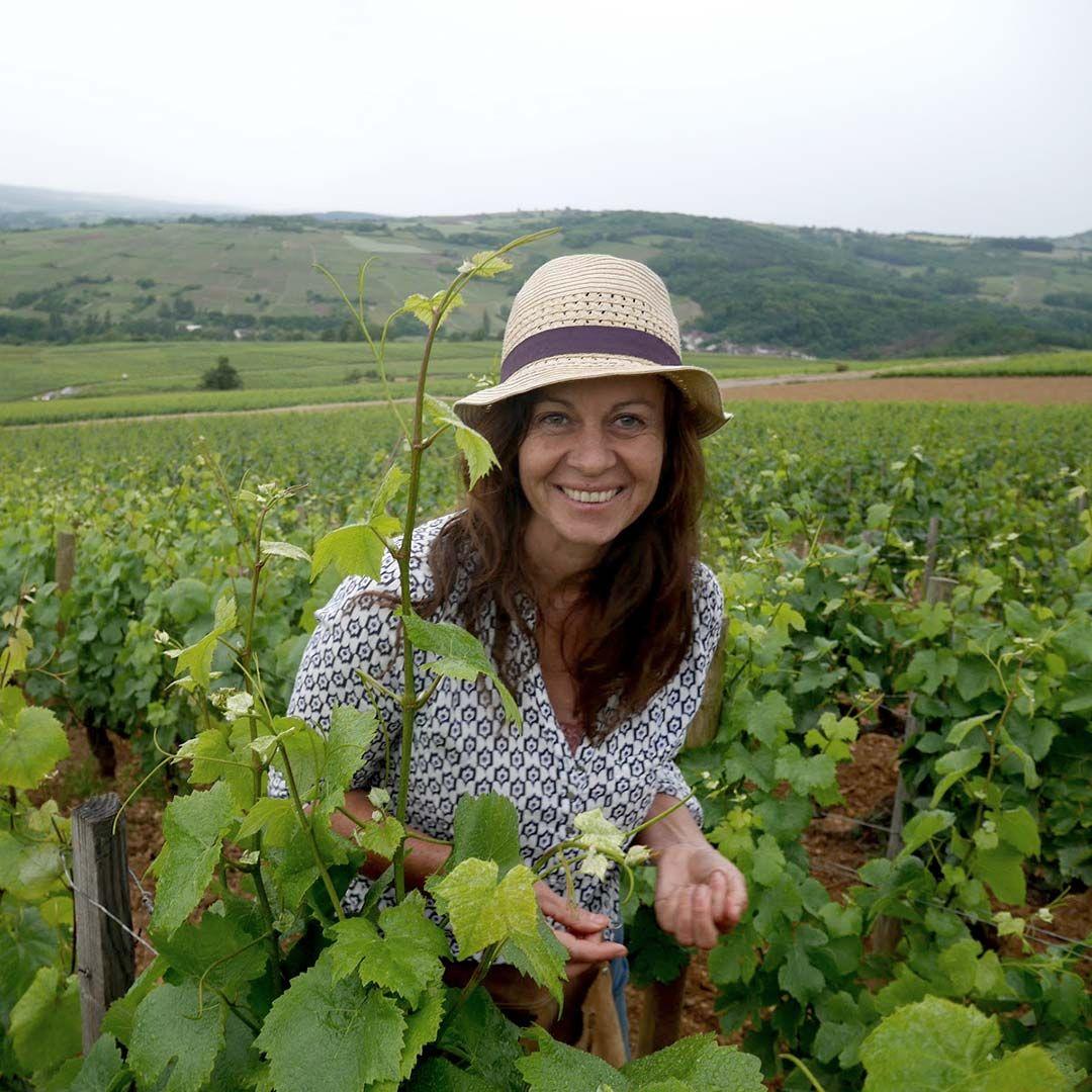 Burgundy Wine Dinner
