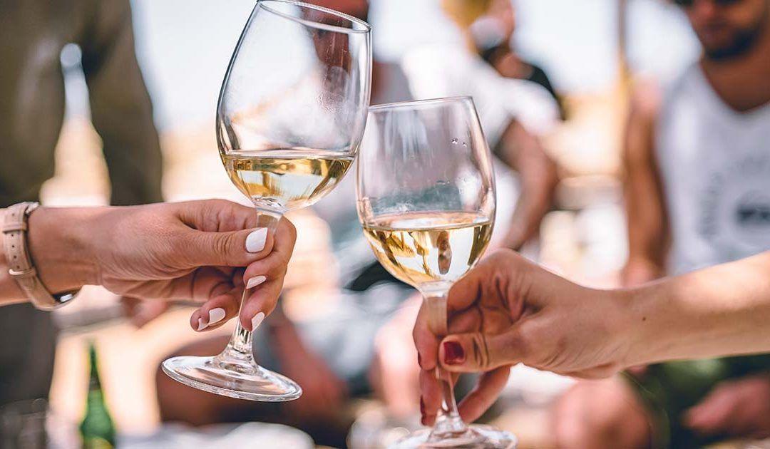 Explore the Wines of the Region